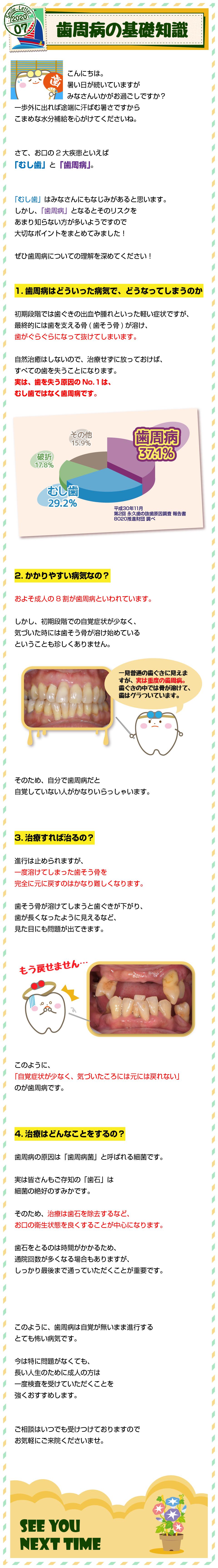 SL_2007_歯周病の基礎知識